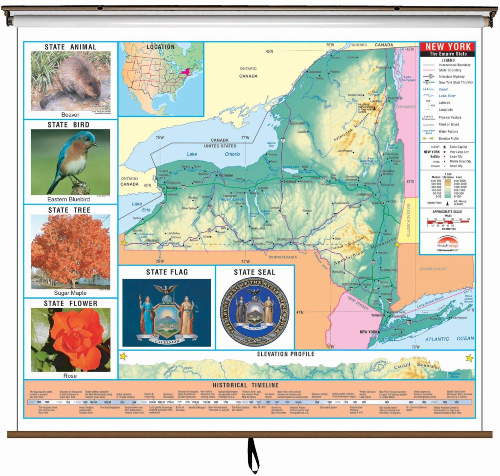 New York State Primary Thematic Wall Map On Roller W Backboard